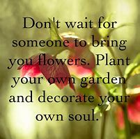 plant your own flowers