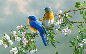 two-little-birds.jpg